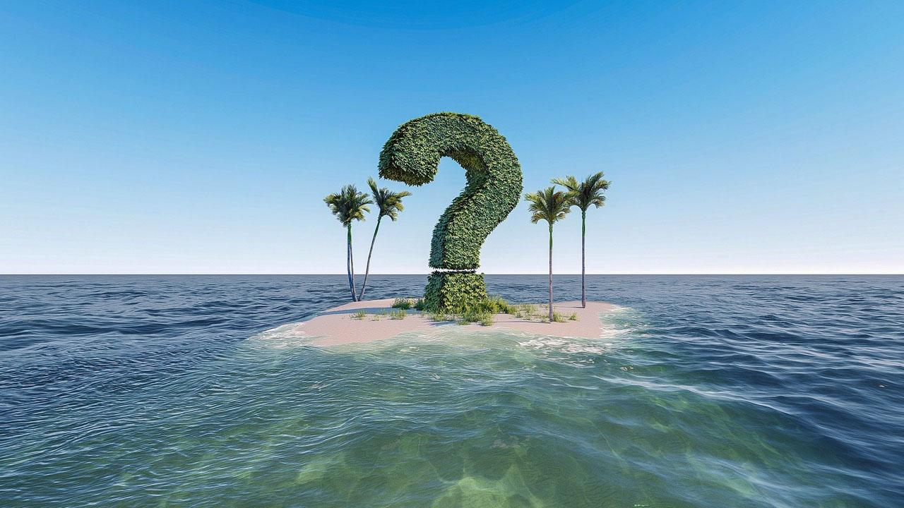 ?の木がある島